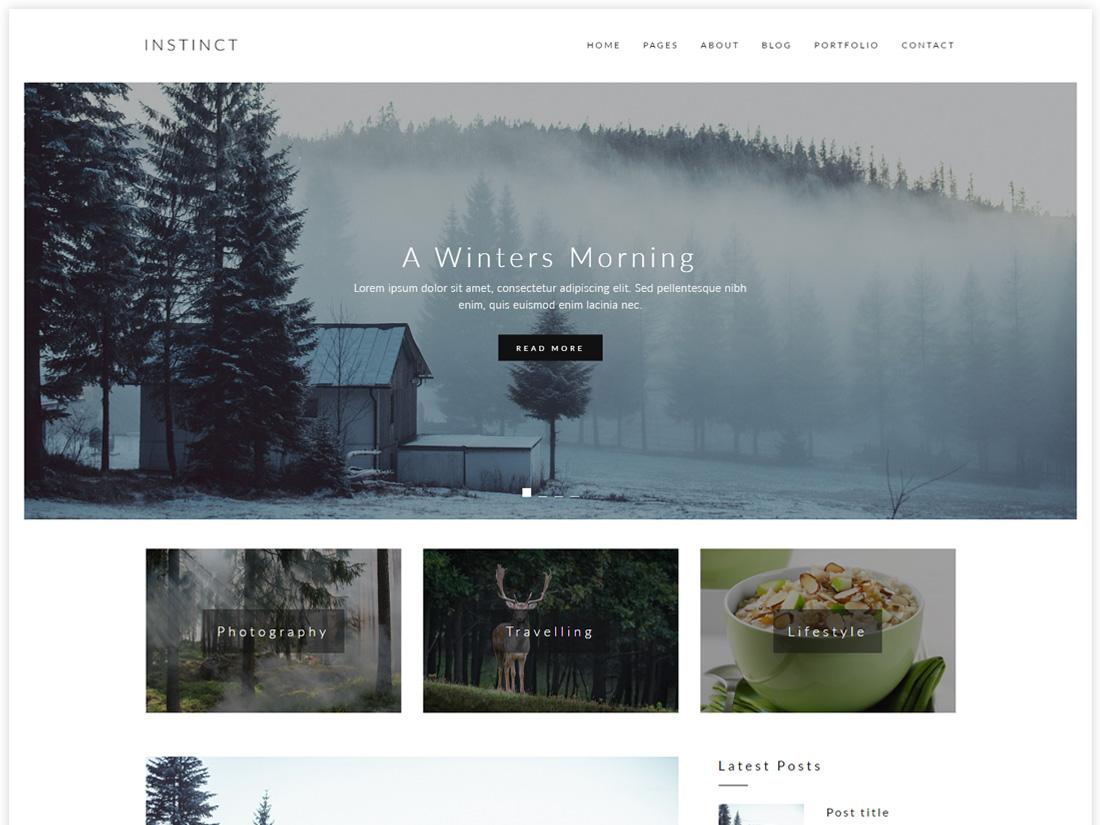 Instinct - Blog & Portfolio HTML5 Template